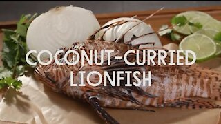 Coconut Curried Lionfish Recipe