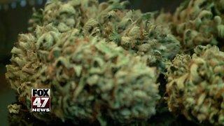 Medical marijuana licensing deadline put on hold