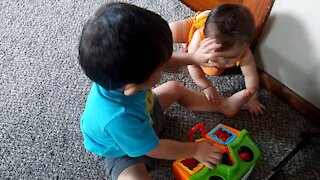 Brothers Fighting over toys
