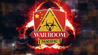 Bannons WarRoom Ep 532: Numbers Don't Lie (w/ Darren Beattie and Frank Walker)