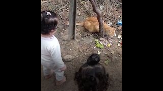 Children look at the cat while it is eating