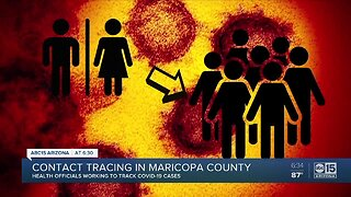 Contact tracing in Maricopa County