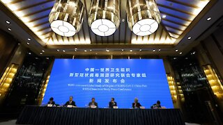 W.H.O. Studies Origins Of COVID-19 In China