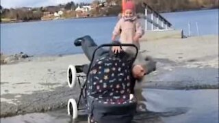 Kid falls into puddle