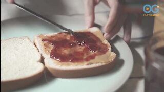 Peanut Butter & Jelly - The Most Popular Lunch!