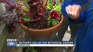 Green Bay Botanical Gardens shows us how to pot a plant for mom