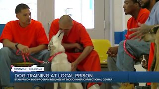 Dog training returns at DCCC