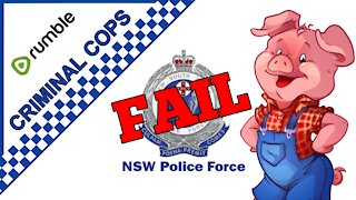 NSW Police use excessive force / Assault Woman Driver