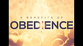 3 Reasons for Obedience
