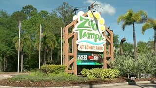 ZooTampa at Lowry Park temporarily closes due to coronavirus concerns