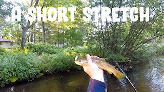 A Short Stretch