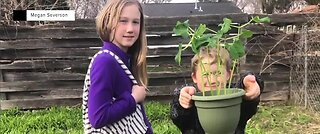 Earth Day activities from home