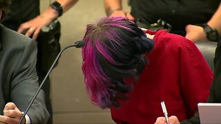 18-year-old accused in deadly STEM School shooting appears in court