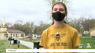 Bellevue students working to clean up parks, streets