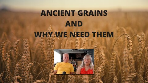 ANCIENT GRAINS AND WHY WE NEED THEM