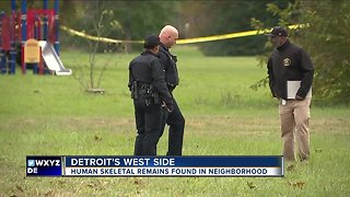 Detroit Police investigate skeletal remains found in sewer near Steopel Park