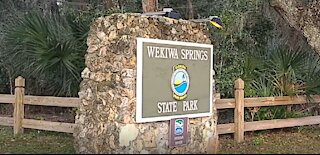 Wekiva Springs State Park Review and every campsite recorded
