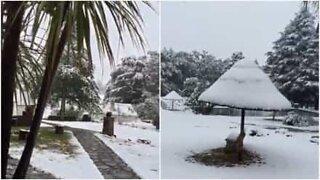 Snøfall i Sør-Afrika om sommeren