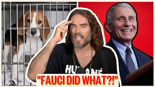 """""""It's BARBARIC!!"""" Fauci's Puppy Shame - Can We Trust Him?"""
