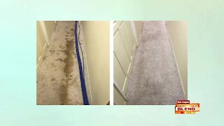 Carpet Cleaning A Step Above The Rest