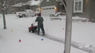 GreenPal app launches snow removal