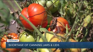 Pandemic forces shortage of canning supplies
