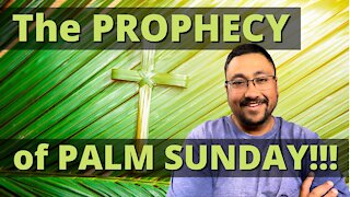 PALM SUNDAY is all about BIBLE PROPHECY!!!