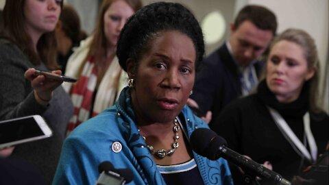 Representative Sheila Jackson-Lee (D-TX) Introduces HR 127 Gun Bill