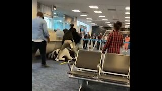 Massive Brawl At Miami International Airport