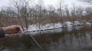 Winter Wonderland Trout Fishing