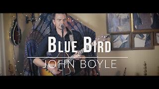 John Boyle. Blue Bird. (Original Song)