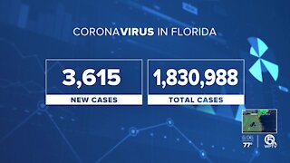 COVID cases drop to their lowest in months