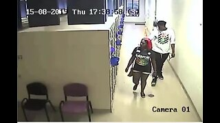 Police look to identify 2 suspects who stole a puppy from a local animal shelter