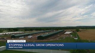 Green Gold Rush: Illegal medical marijuana grows festering in rural Oklahoma