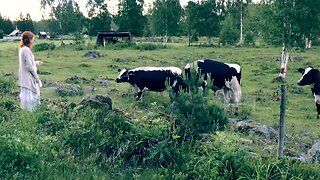 SWEDISH MUSICIAN CHANNELS INNER SNOW WHITE BY ATTRACTING COWS AND BIRDS WITH HER TRADITIONAL SINGING