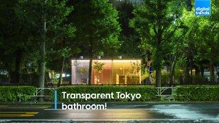 Transparent Tokyo bathroom!