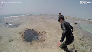 Dykkere fant en fantastisk korallhule