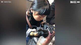 Una tatuatrice professionista di 9 anni d'età