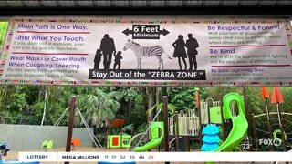 Naples Zoo reopens with new safety measures for visitors