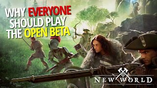 Why You Should Play The Open Beta - New World