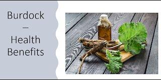Burdock - Health Benefits