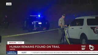 Human remains found on trail