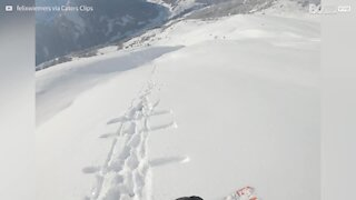 Un skieur s'écrase dans un mur de neige