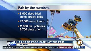 San Diego County Fair: By the numbers