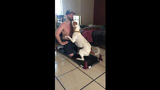 """Loving dog """"helps"""" owner with his workout"""