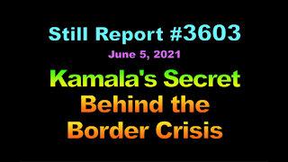 Kamala's Secret Behind the Border Crisis, 3603