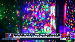 Holiday Lights at CALM earns national recognition