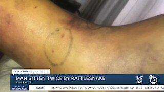 South Bay man bitten twice by rattlesnake