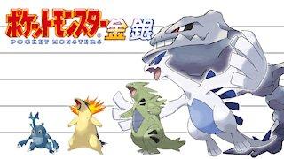 Pokemon Second Generation No. 152-251 | Height Comparison