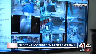 Police continue investigation after shots were fired outside Oak Park Mall